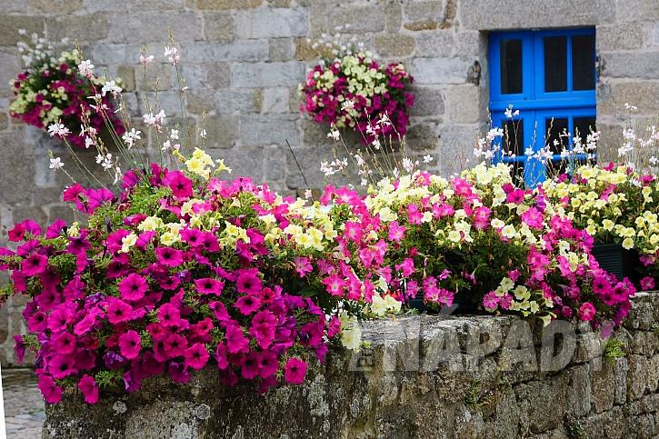 Francouzský styl bydlení