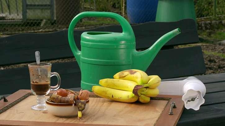Připravte si několik skvělých hnojiv pro vaše rostlinky