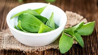 Která rostlina je mnohem sladší než cukr a přitom téměř bez kalorií?