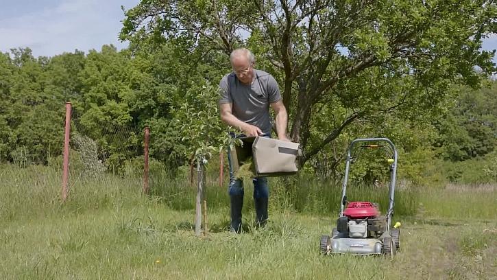Jak využít posekanou trávu
