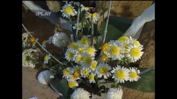 Sběratel chryzantém