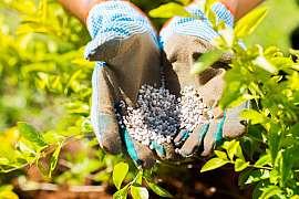 Výživa půdy po celý rok zajistí bohatou sklizeň