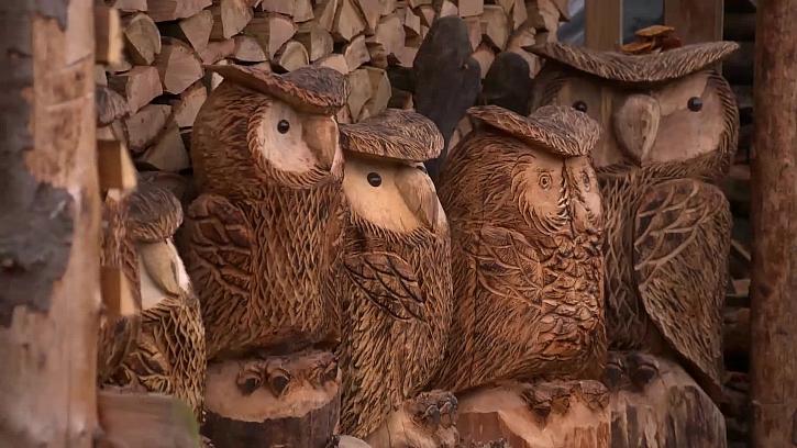 Dřevěné sovy