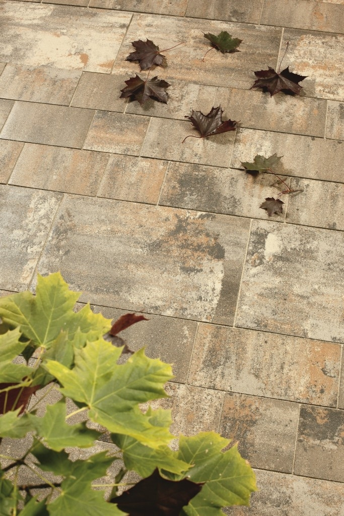 Kombinace dlažby BELEZA a BELISIMA se sametovým povrchem, barva Arabica