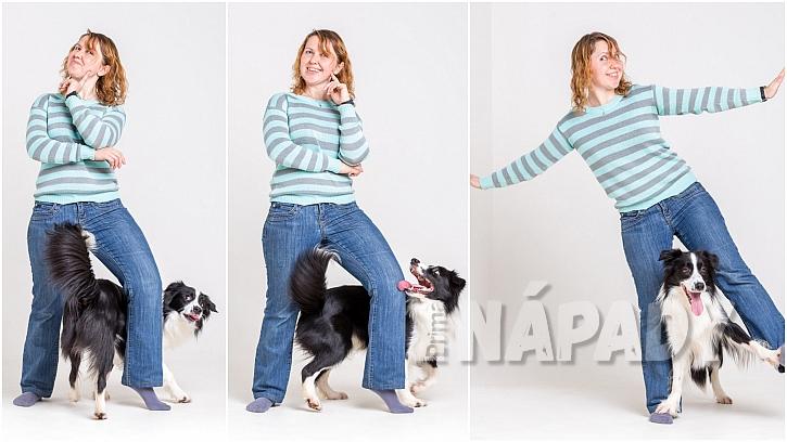 Dog dancing: Dejte se do tance s vlastním psem