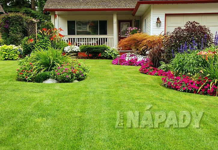 Jak pečovat o trávník?