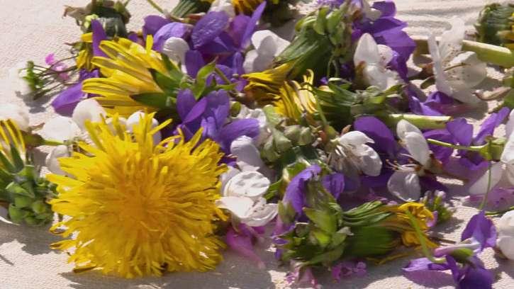 Čerstvé jedlé květy