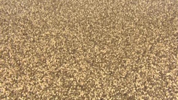 Mramorový koberec