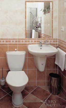 I WC se musí občas vyměnit
