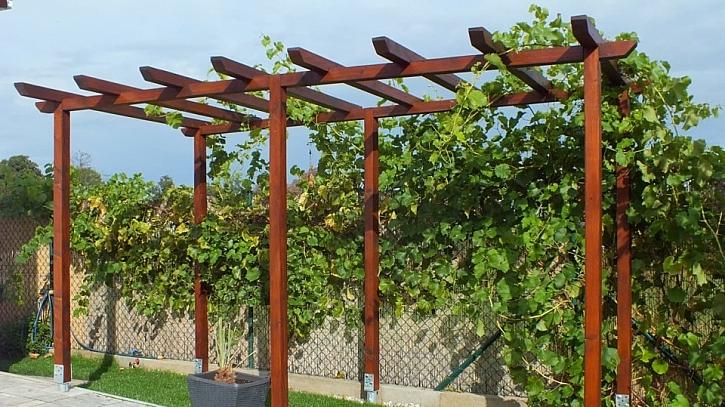 Jak si na zahradě postavit pergolu nebo loubí