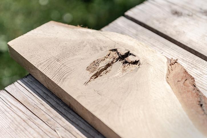 suk ve dřevě