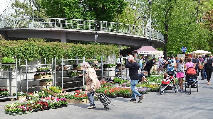 První letošní Zahradnické trhy na Floře již tento víkend (Zdroj: Výstaviště Flora Olomouc)