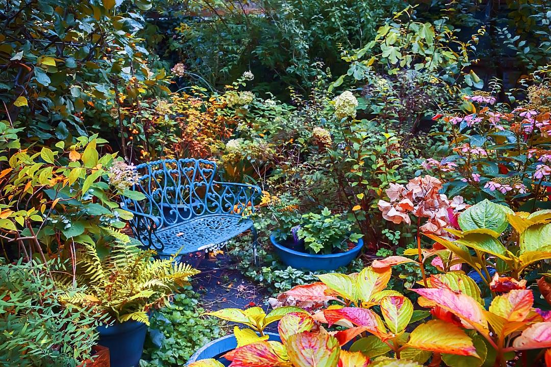 obrázek tématu: Podzimní zahrada