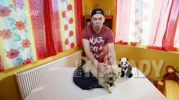 Jak si vytvořit pelíšek pro psa ze staré mikiny