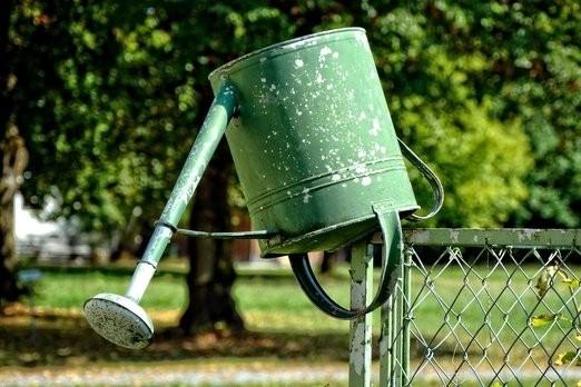 3 tipy, jak si usnadnit práci na zahradě