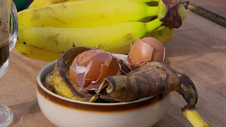 Banánové slupky, vaječné skořápky, kávová sedlina a další zbytky zeleniny a ovoce
