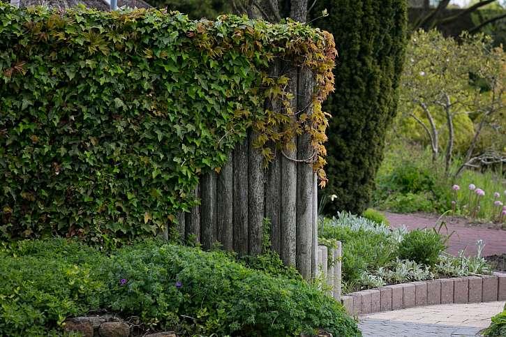 Zahradní dělicí stěna