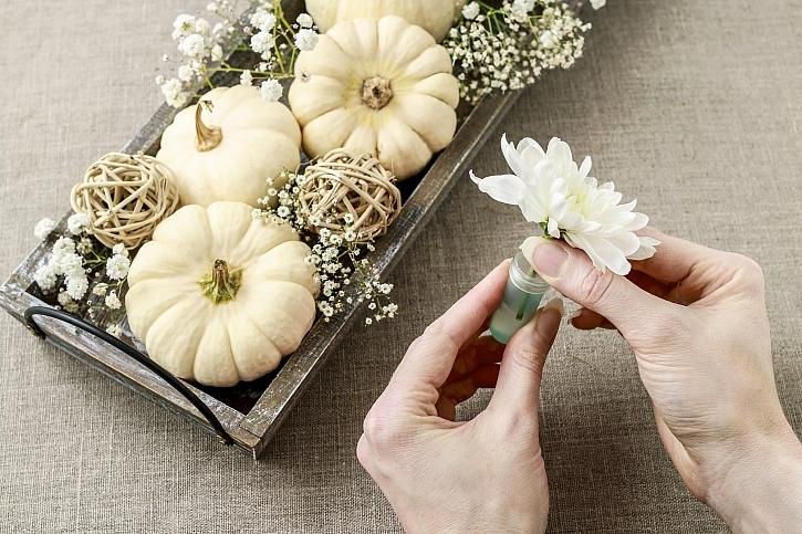 Květy chryzantém vložíme do ampulí