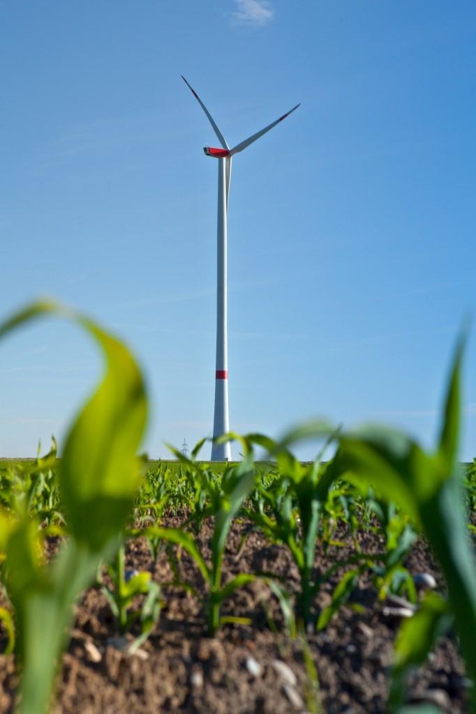 Malé větrné elektrárny se uplatní i u domu