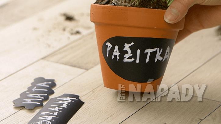 Jak šikovně označit květináče jménem byliny: vystřihněte jmenovky a bílým fixem napište názvy bylin