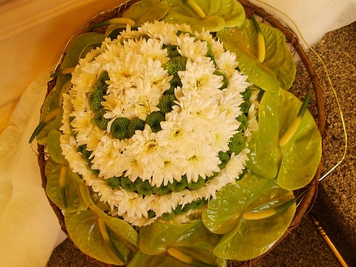 Chryzantémy a Anturie