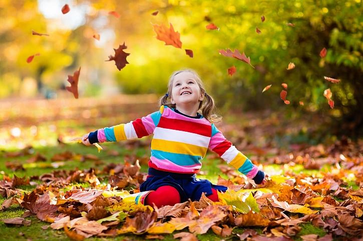 Dopřejte své zahradě poctivou podzimní údržbu a správné zazimování (Zdroj: Depositphotos)