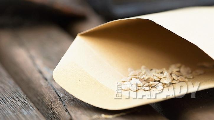 Na tradiční výsev potřebujete výsevní misku, substrát, který neobsahuje moc živin, průhlednou fólii a zeleninová semínka
