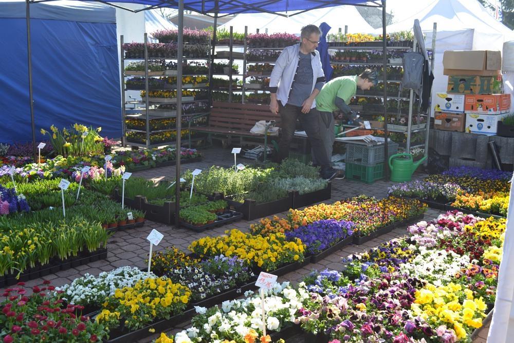 Přivítejte jaro se vší parádou! Zveme vás na jarního Zemědělce 2020, Jaro s koňmi a Festival dechovky
