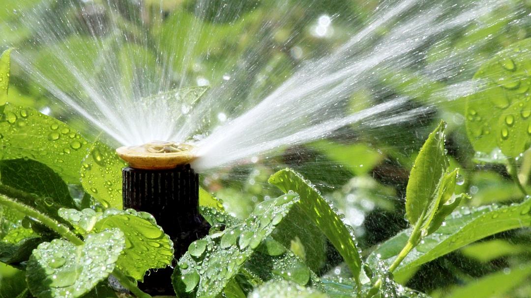 obrázek tématu: Závlaha zahrady