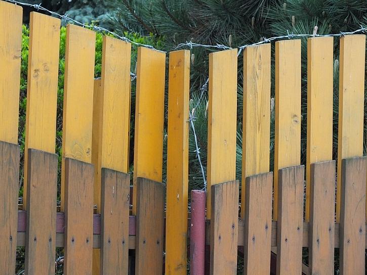 Antikutil - rostoucí plot s ostnatým drátem
