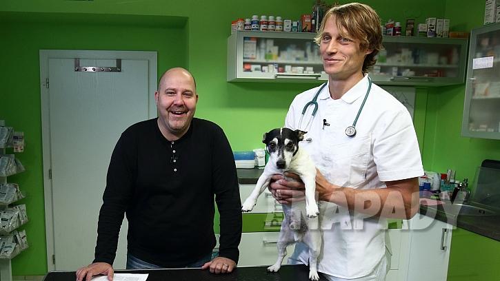 Vše o příčinách a projevech podzimní deprese u psů a koček ví veterinář Rostislav Šimek