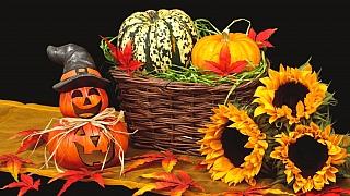 Okrasné dýně: Paleta barev i tvarů pro podzimní dekorace