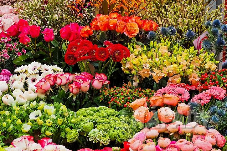 Každá květina něco znamená...