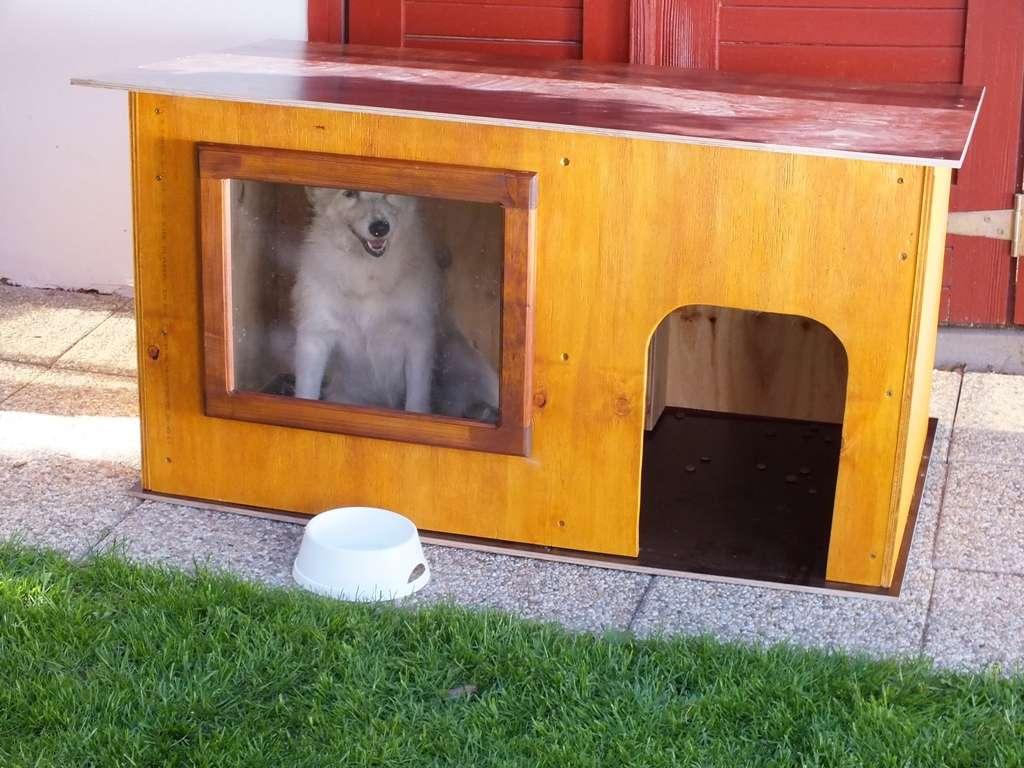 Vyrobte svému psovi letní boudu s oknem
