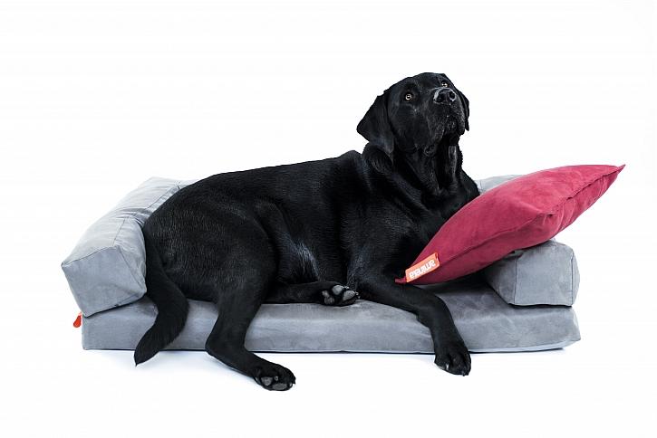 Pelech+pes