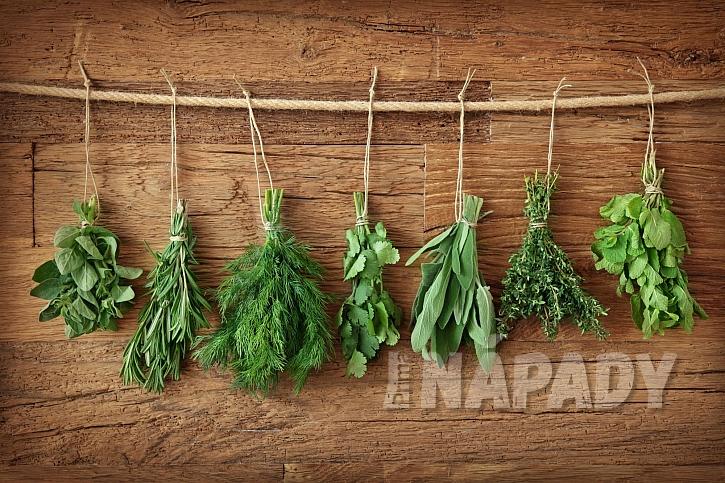 Bylinky mají v kuchyni takřka nezastupitelné využití (Zdroj: Depositphotos.com)