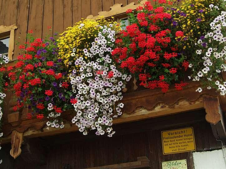 Vodopády květů