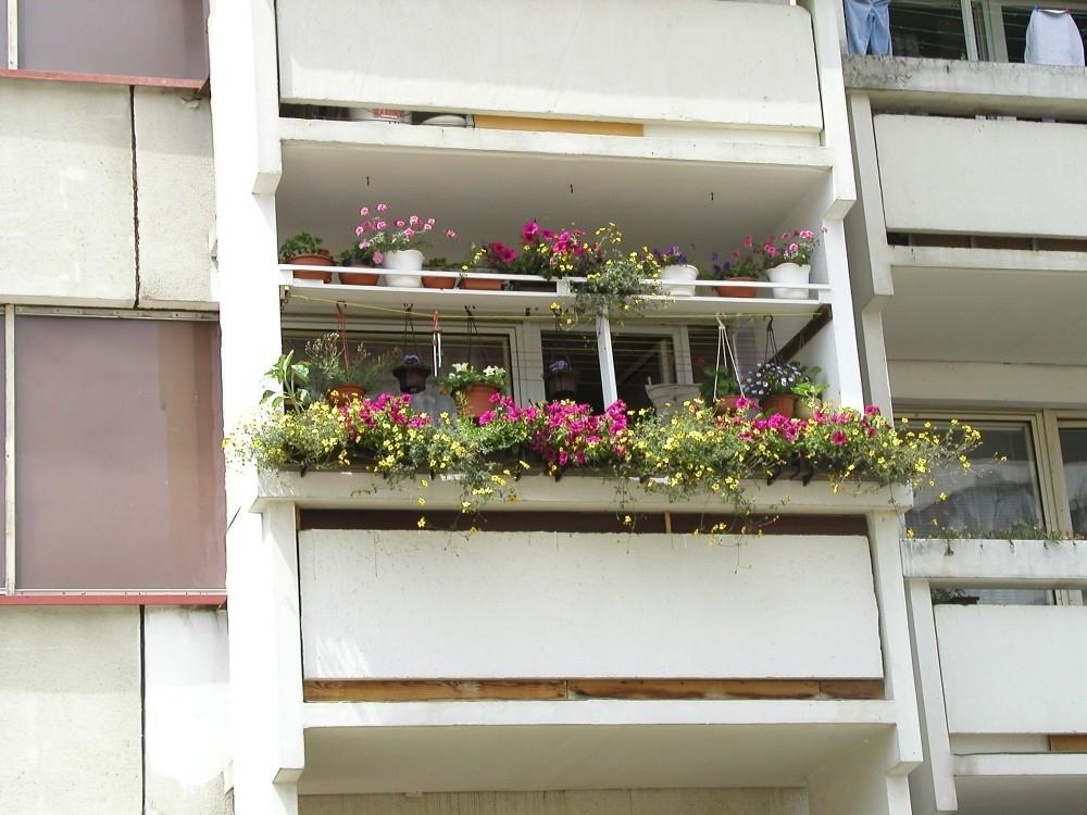 Balkony plné květin