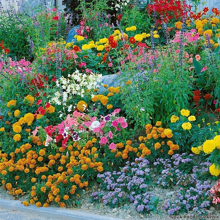 Zahrada na svahu