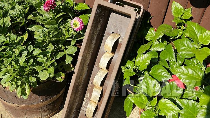 Pěstování zeleniny v truhlíku: takto připravený truhlík se naplní zeminou a osadí
