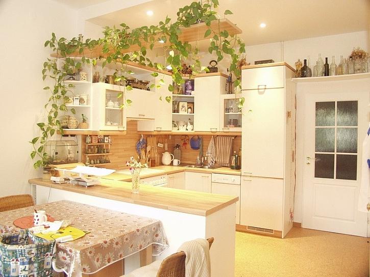 Kuchyň a úložný prostor