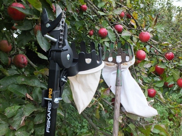 Na jablka s Fiskars česáčkem