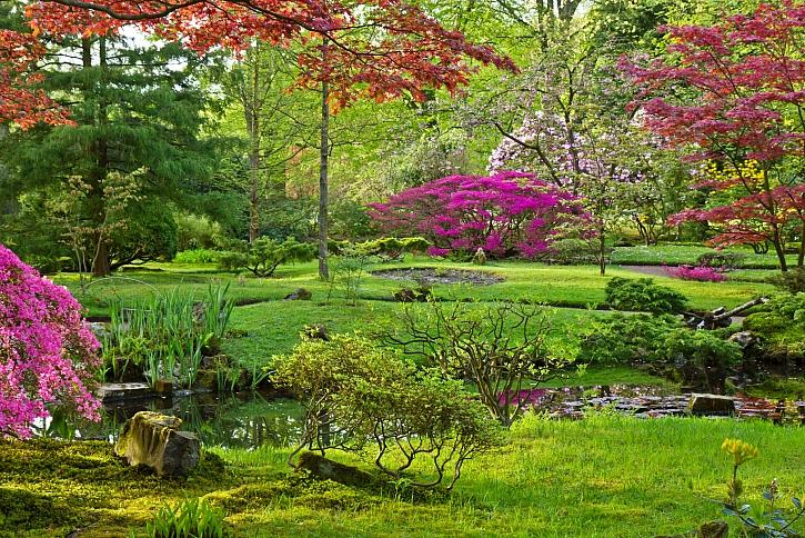 Zahradní architekt - vaše jistota při úpravách zahrady