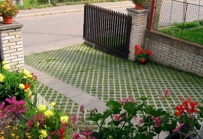 Transform zve na Flora Olomouc