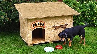 Praktická psí bouda aneb bydlení na míru pro Ferdu