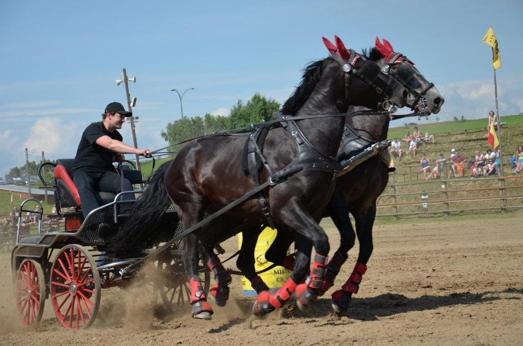 Velký průvod koní, strhující westernové závody i soutěž o 5 000 korun