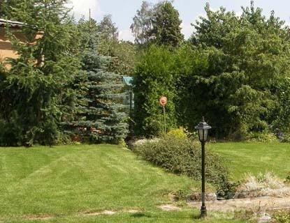 Renovujeme trávník