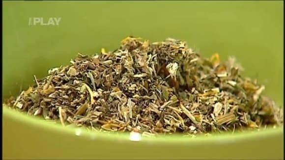 Bylinkové čaje proti nachlazení
