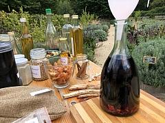 Jak vyrobit tinkturu z kořenů bylinek a další rady