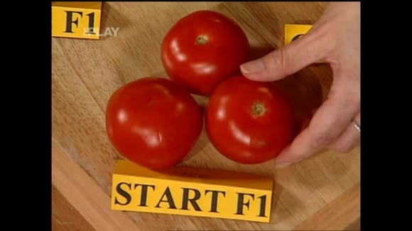 Jaké odrůdy rajčat pěstovat